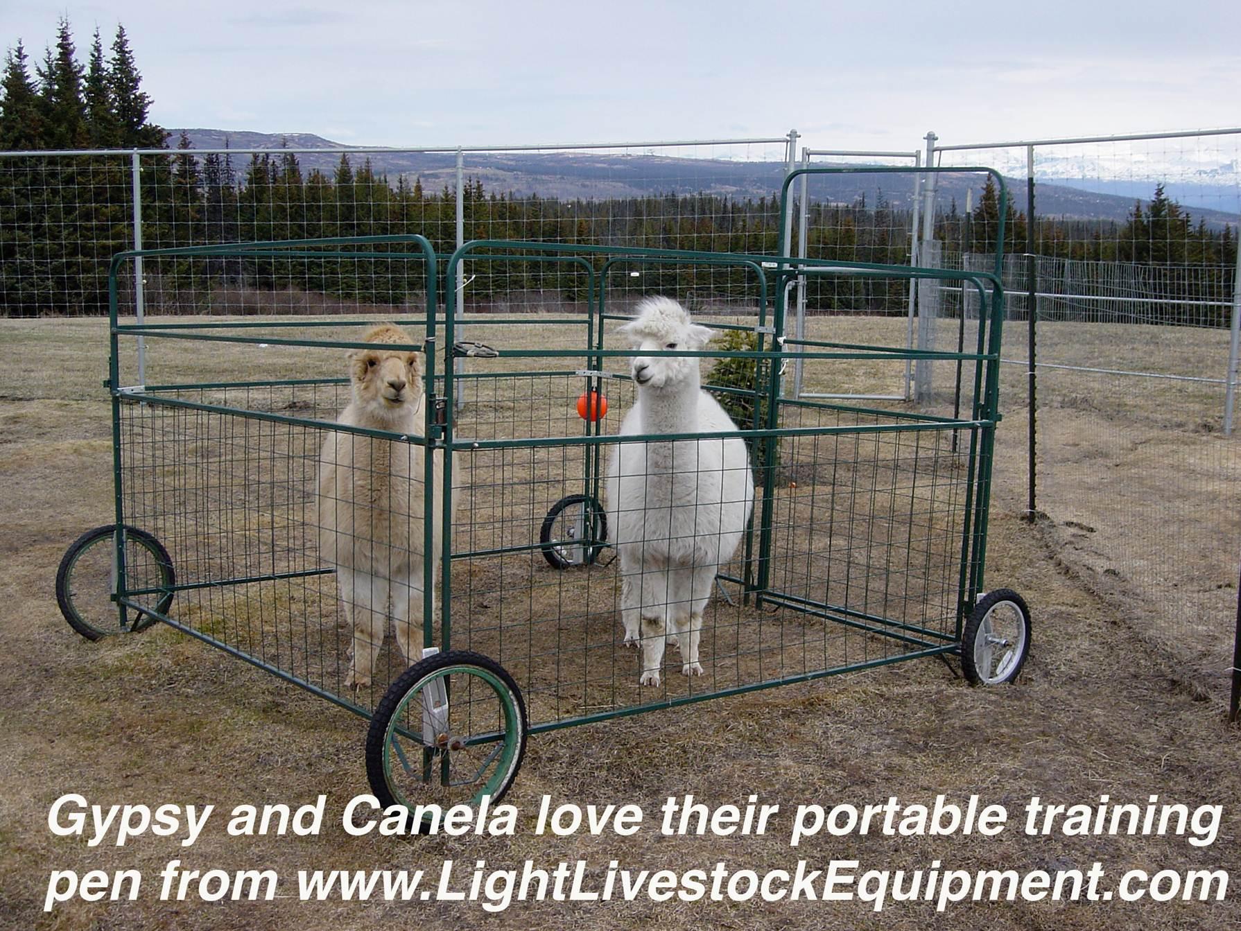 Mesh Panels Amp Gates Light Livestock Archive Light