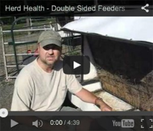 Double Sided Feeders