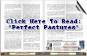 perfect-pastures